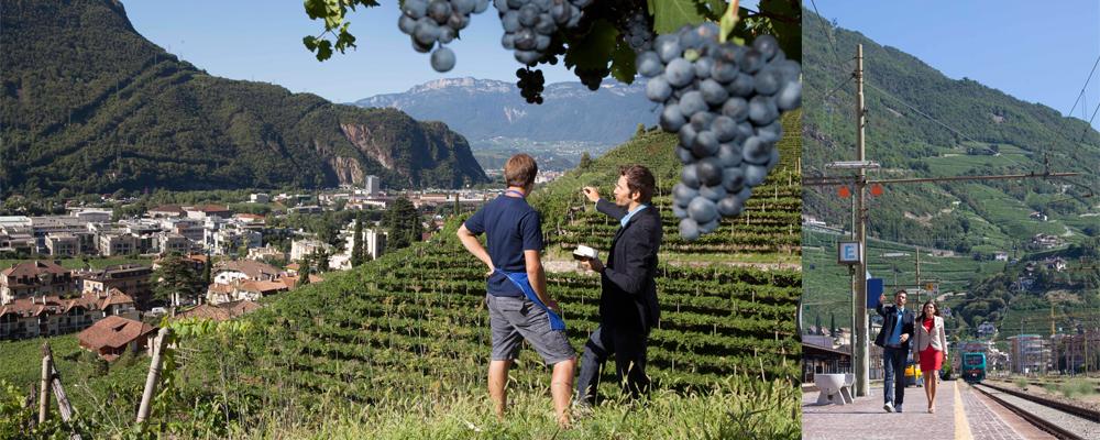 http://www.fotografielafogler.it/files/gimgs/11_regionalentwicklung.jpg